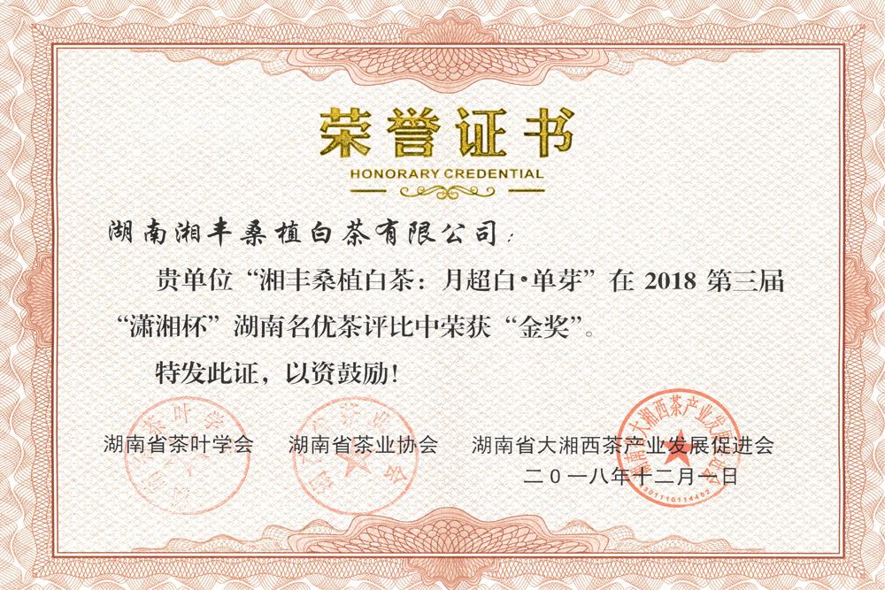 第三届潇湘杯金奖